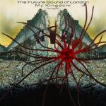 Future Sound of London - FSOL - My Kingdom: Re Imagined