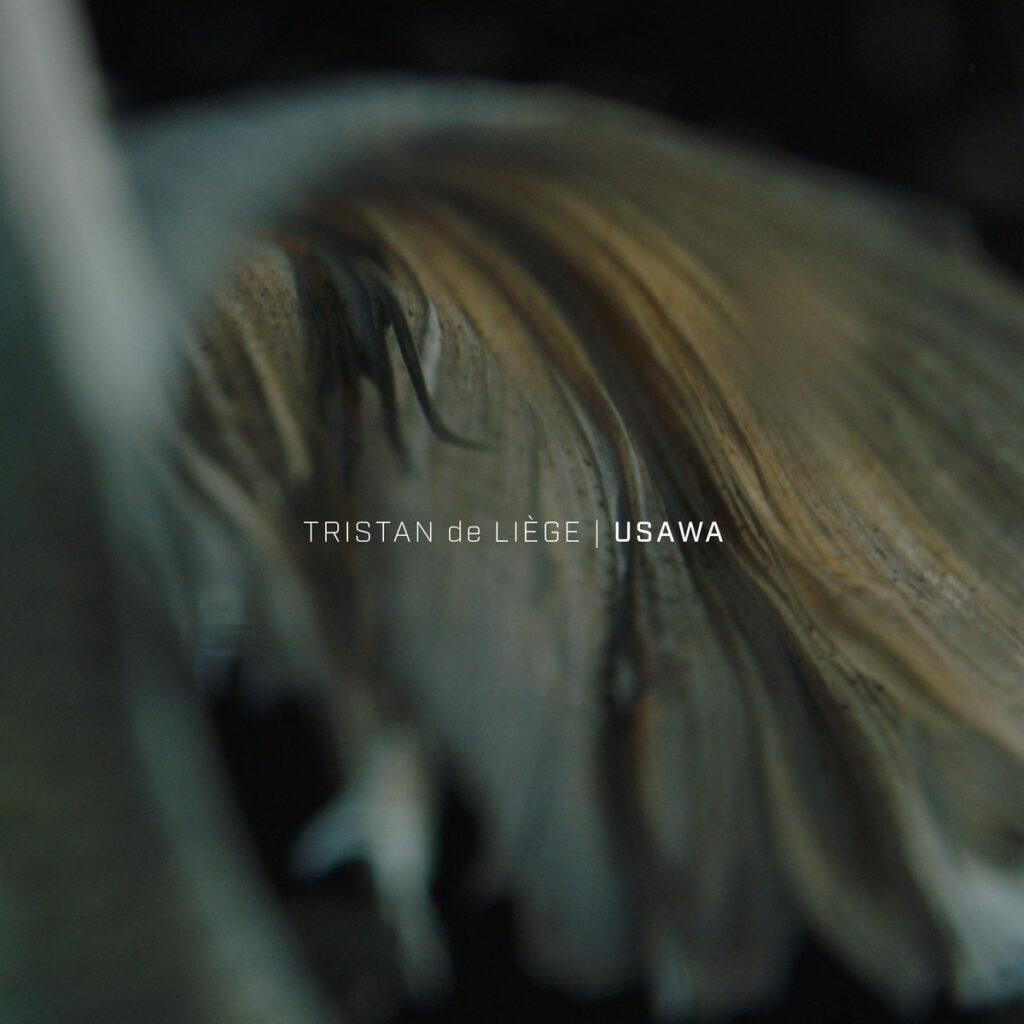 Tristan de Liège - Usawa